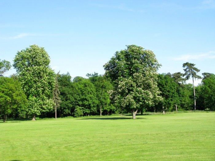 Parks of England